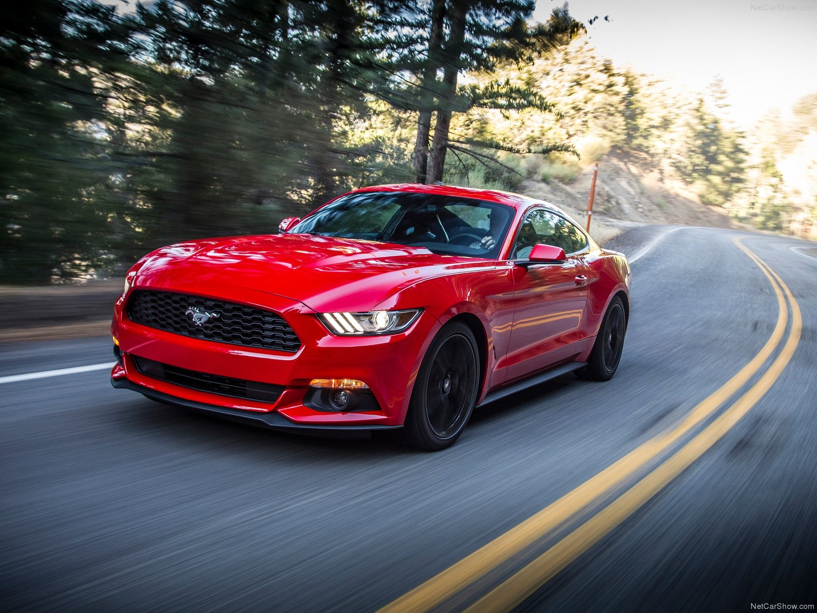 Ford Mustang EcoBoost photo 129803