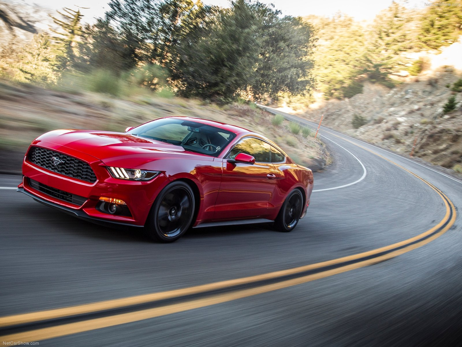 Ford Mustang EcoBoost photo 129804