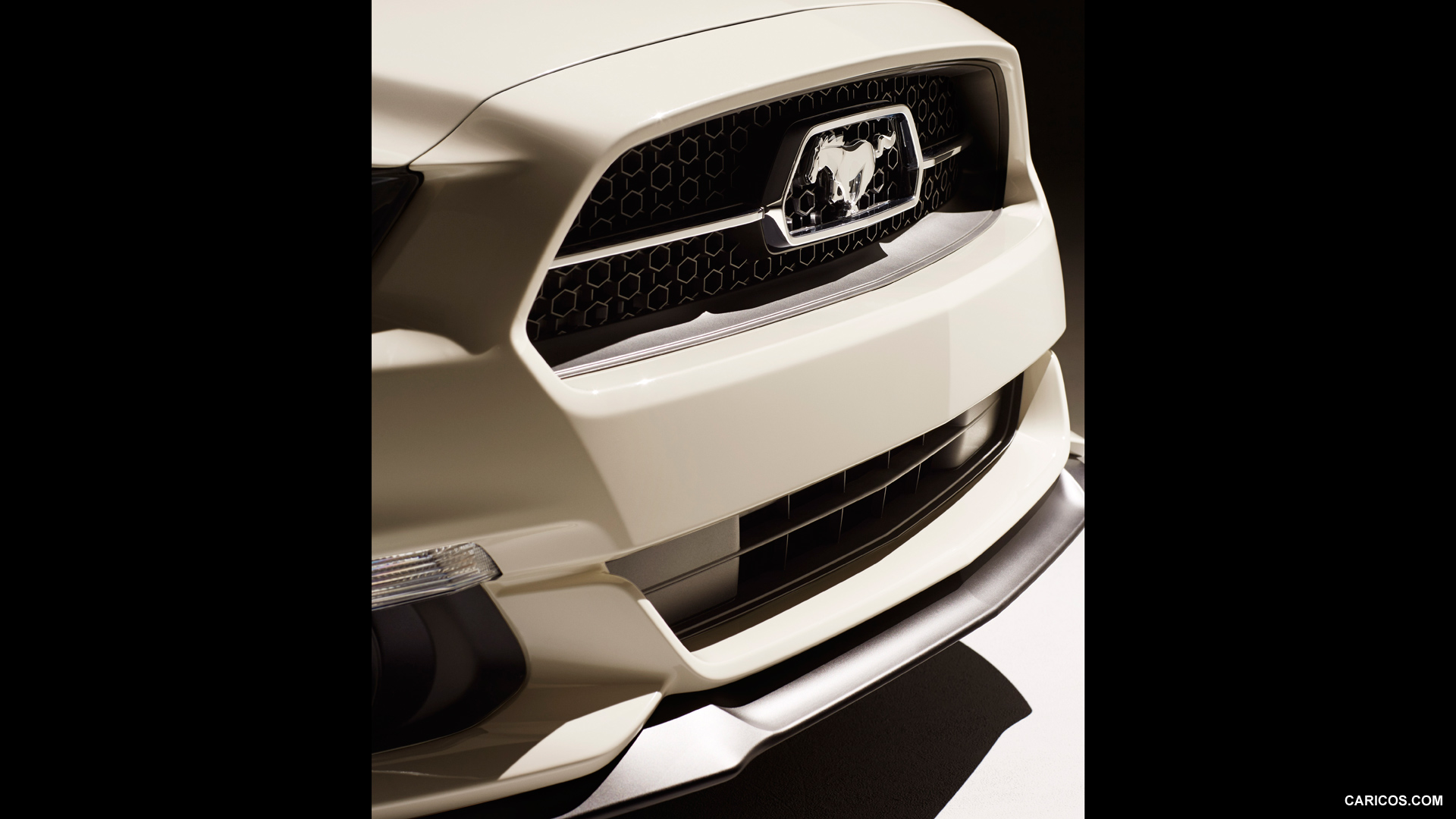 Ford Mustang GT 50 Year Limited Edition photo 117275