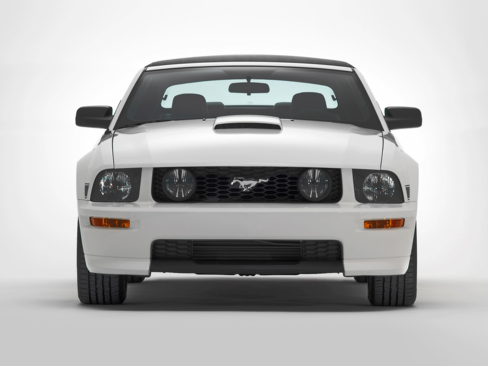 Ford Mustang GT photo 33574