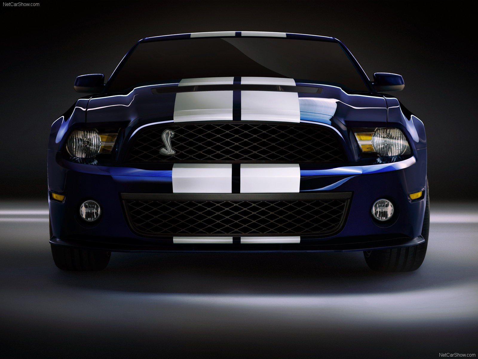 Ford Mustang Shelby GT500 photo 60621