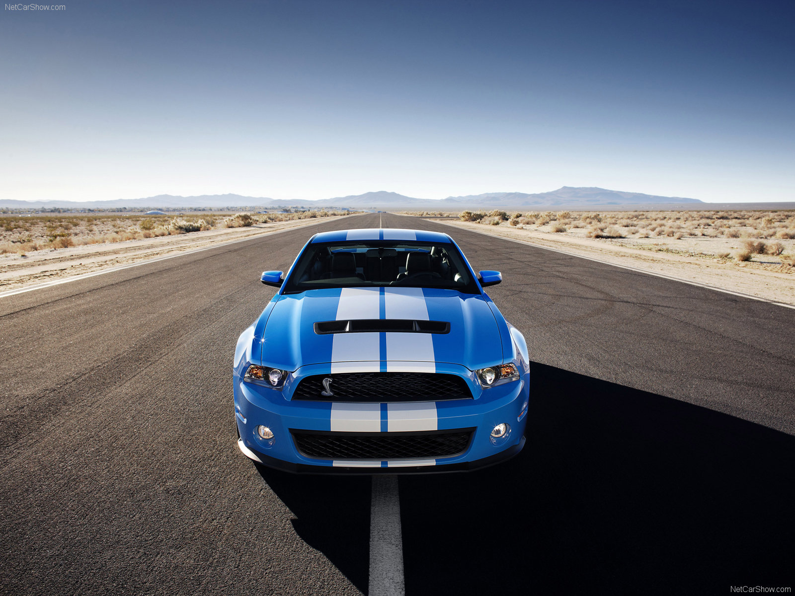 Ford Mustang Shelby GT500 photo 60622