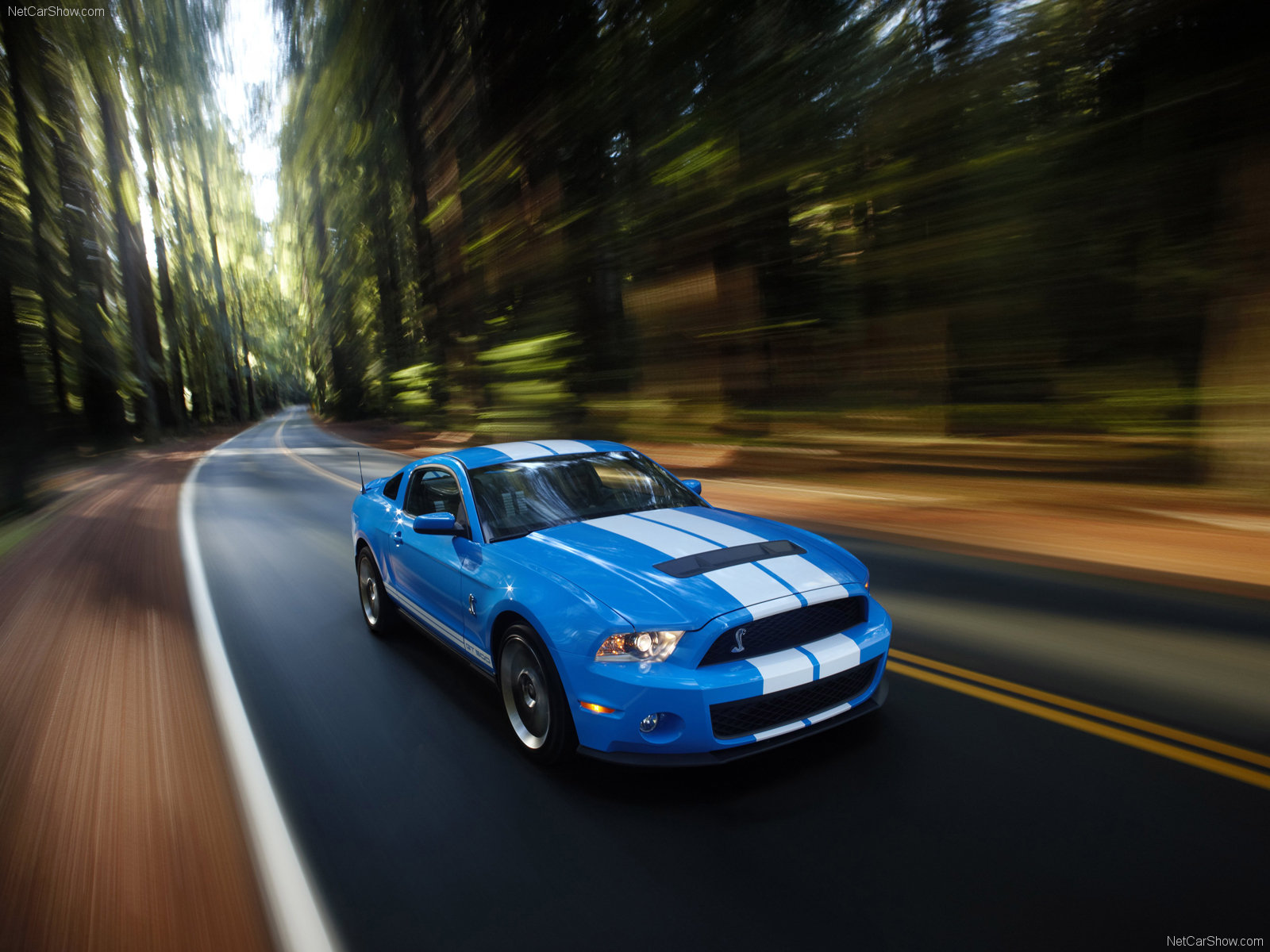 Ford Mustang Shelby GT500 photo 60626