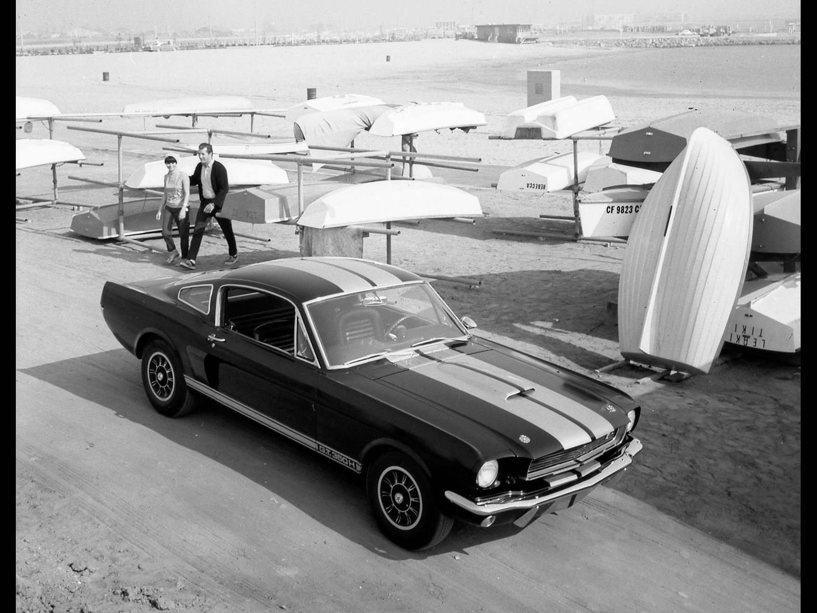 Ford Mustang Shelby photo 33578