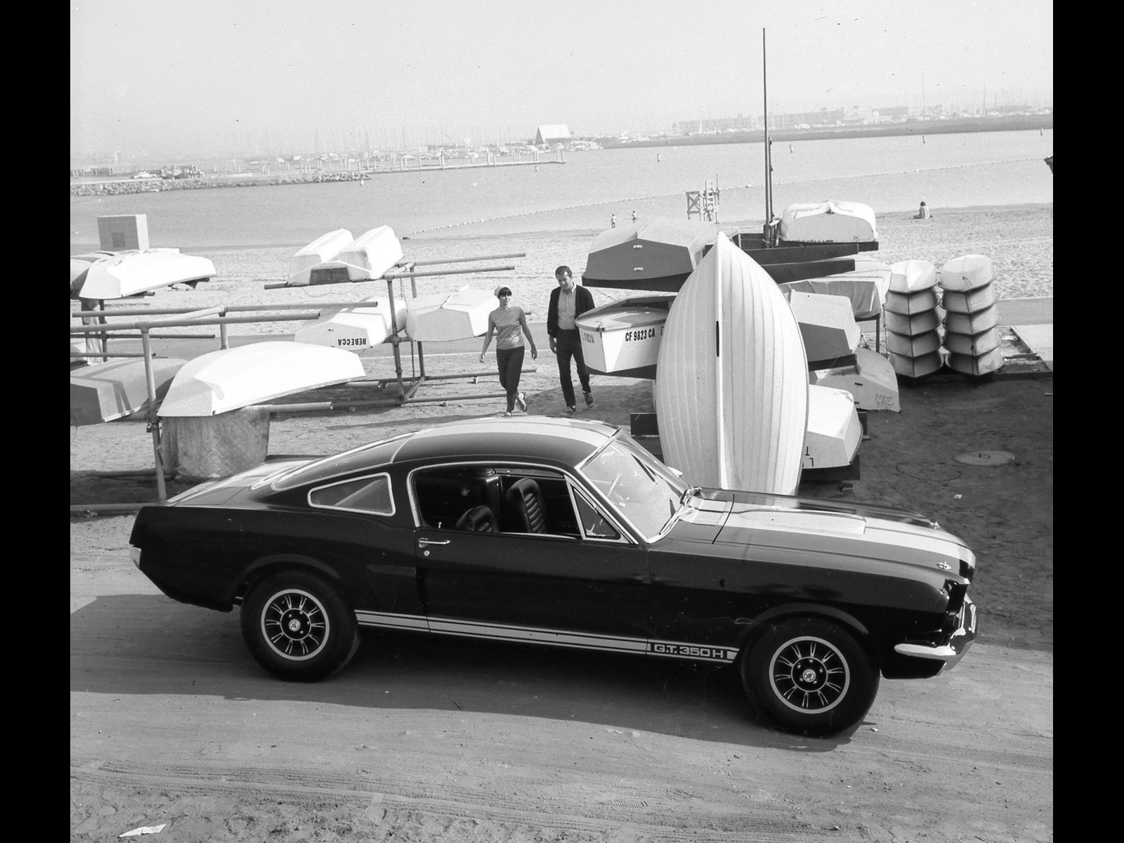 Ford Mustang Shelby photo 33579