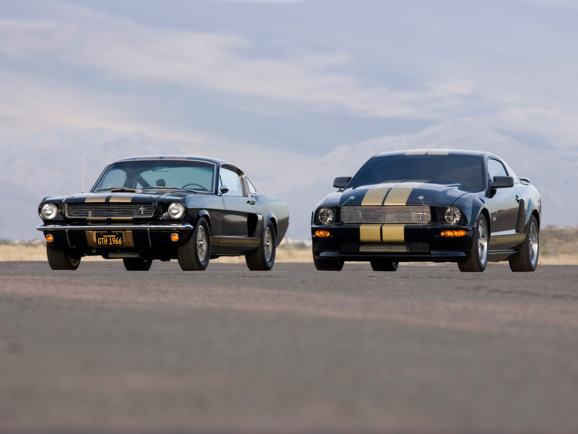 Ford Mustang Shelby photo 33580