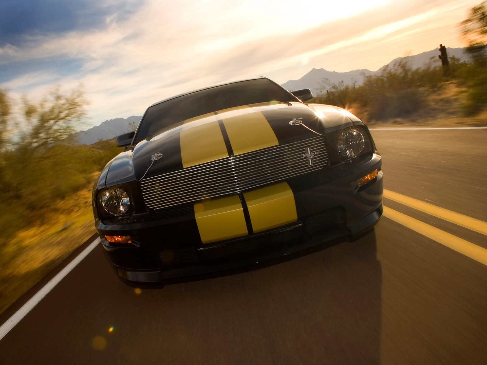 Ford Mustang Shelby photo 33582