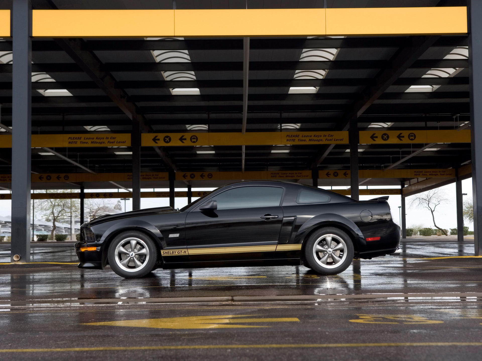 Ford Mustang Shelby photo 33584