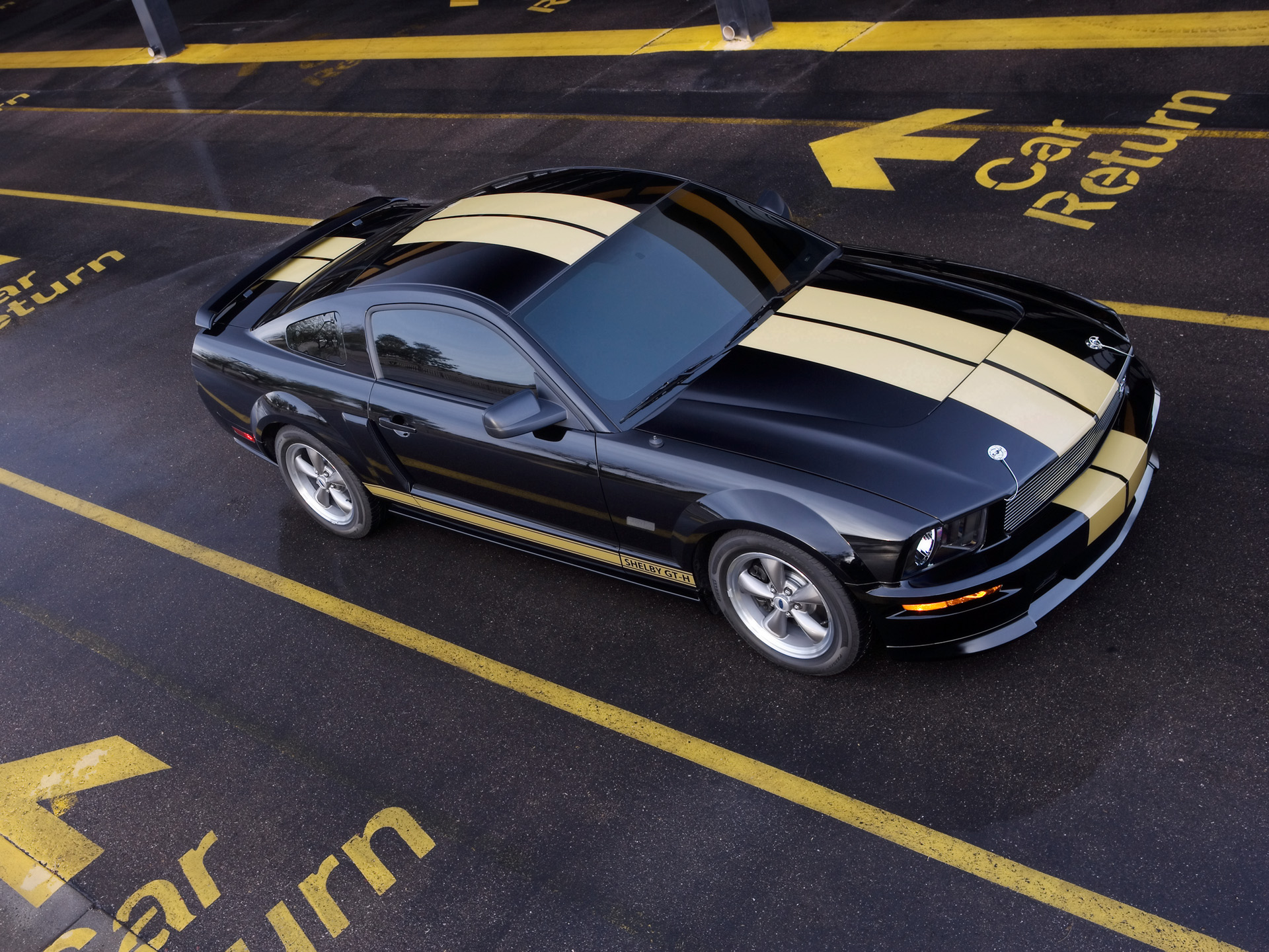 Ford Mustang Shelby photo 33586