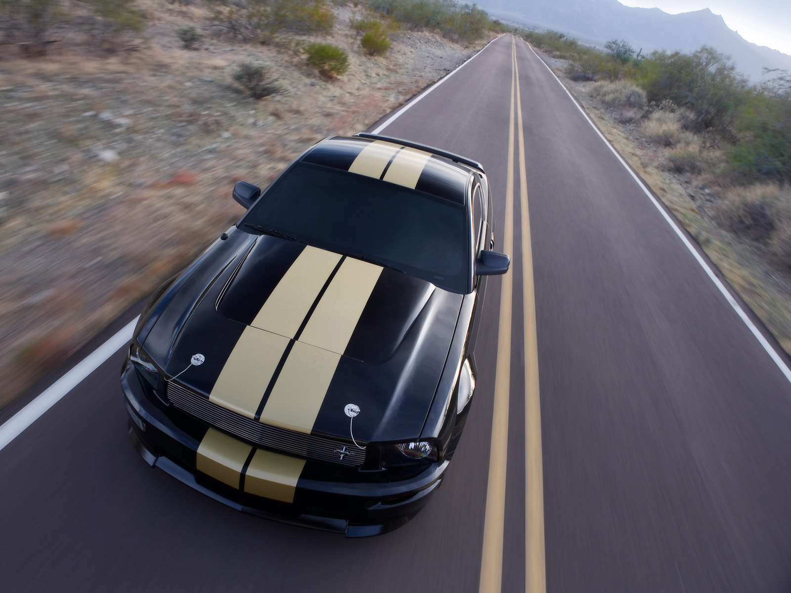 Ford Mustang Shelby photo 33587