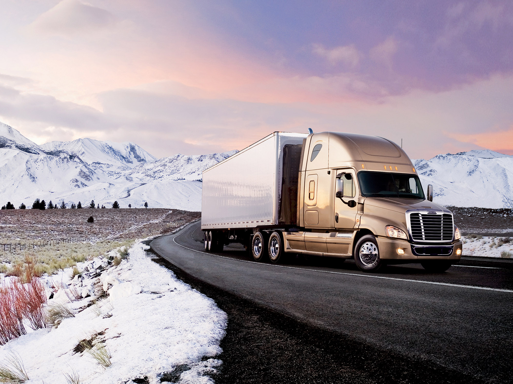 Freightliner Cascadia photo 45504