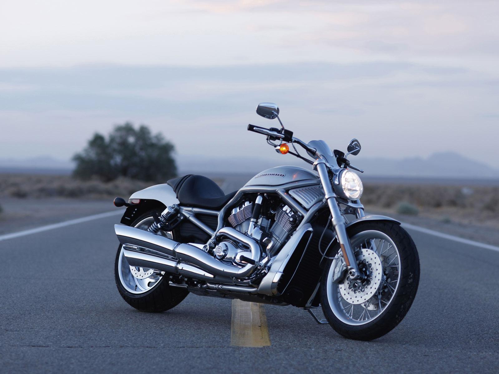 Harley Davidson Vrscaw V Rod Picture 69474 Harley Davidson