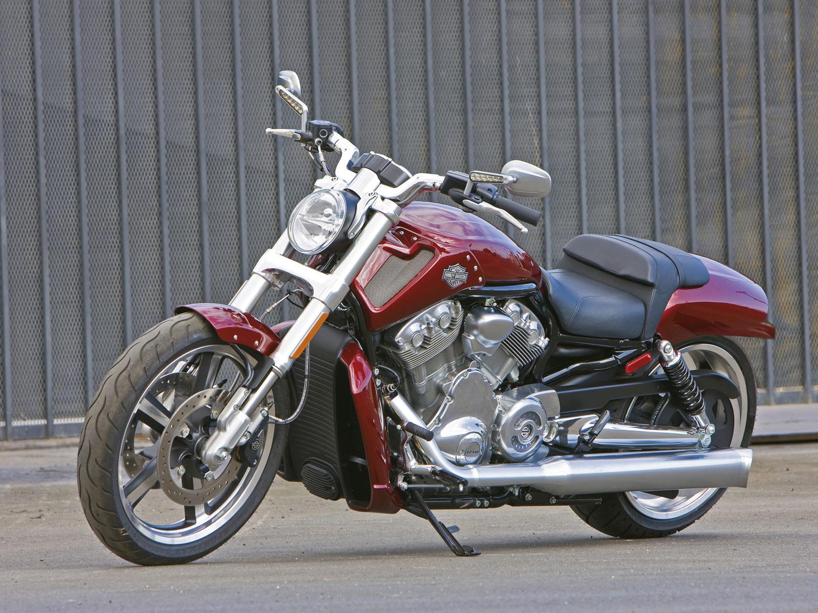 Harley Davidson Vrscf V Rod Muscle Picture 70097 Harley