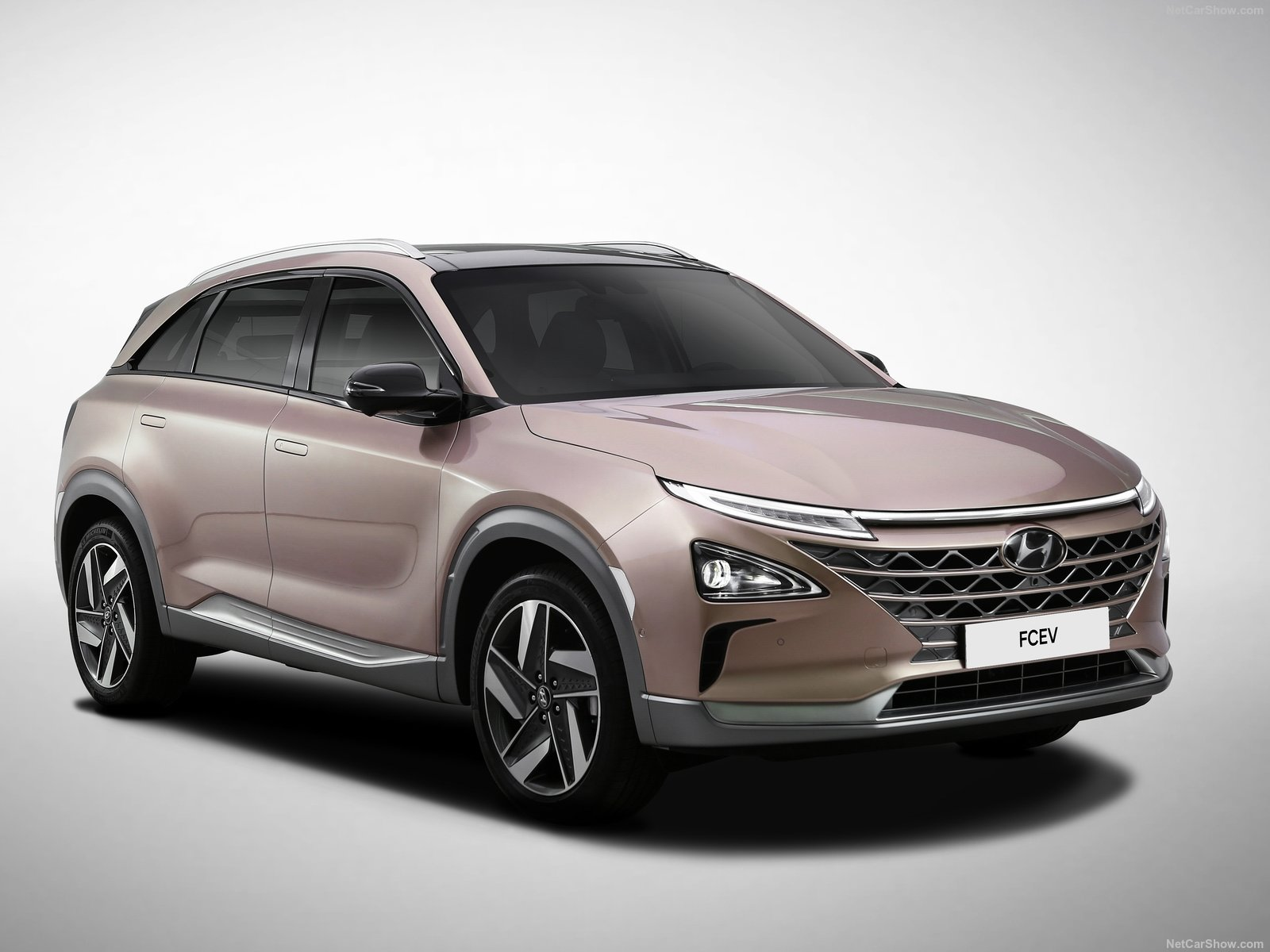 Hyundai Nexo photo 189810