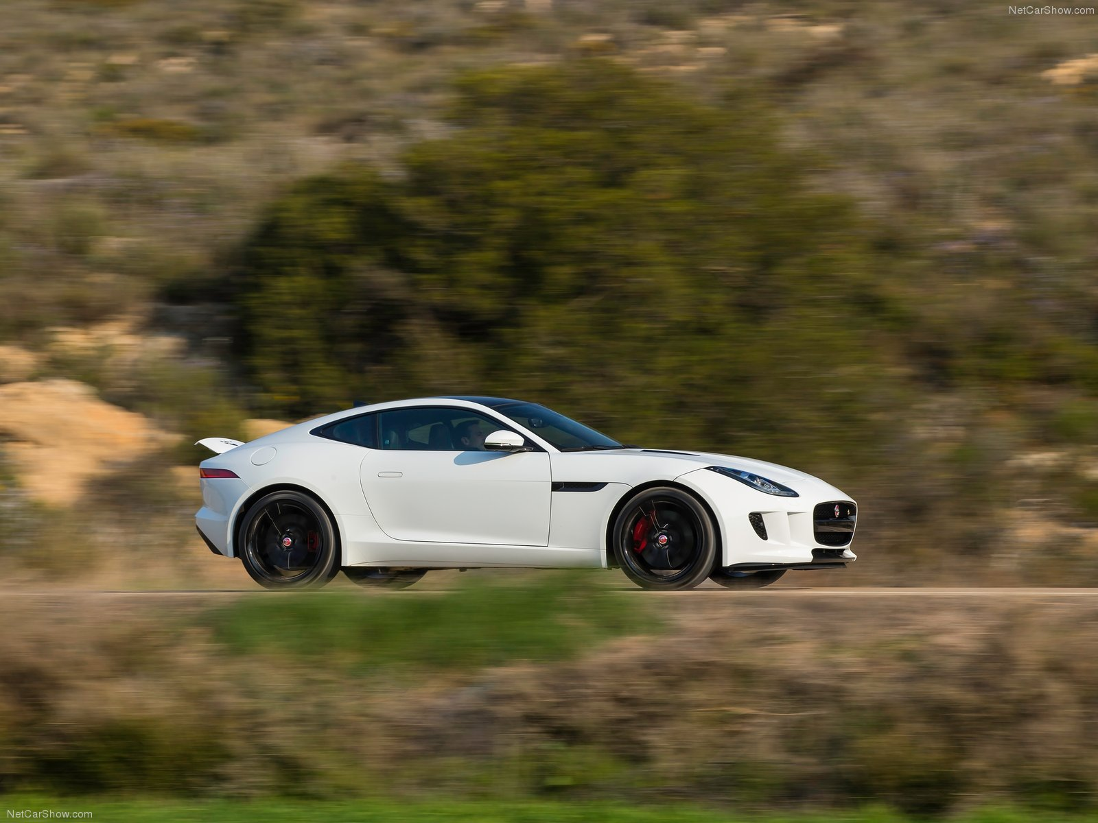 Jaguar F-Type Coupe photo 116537