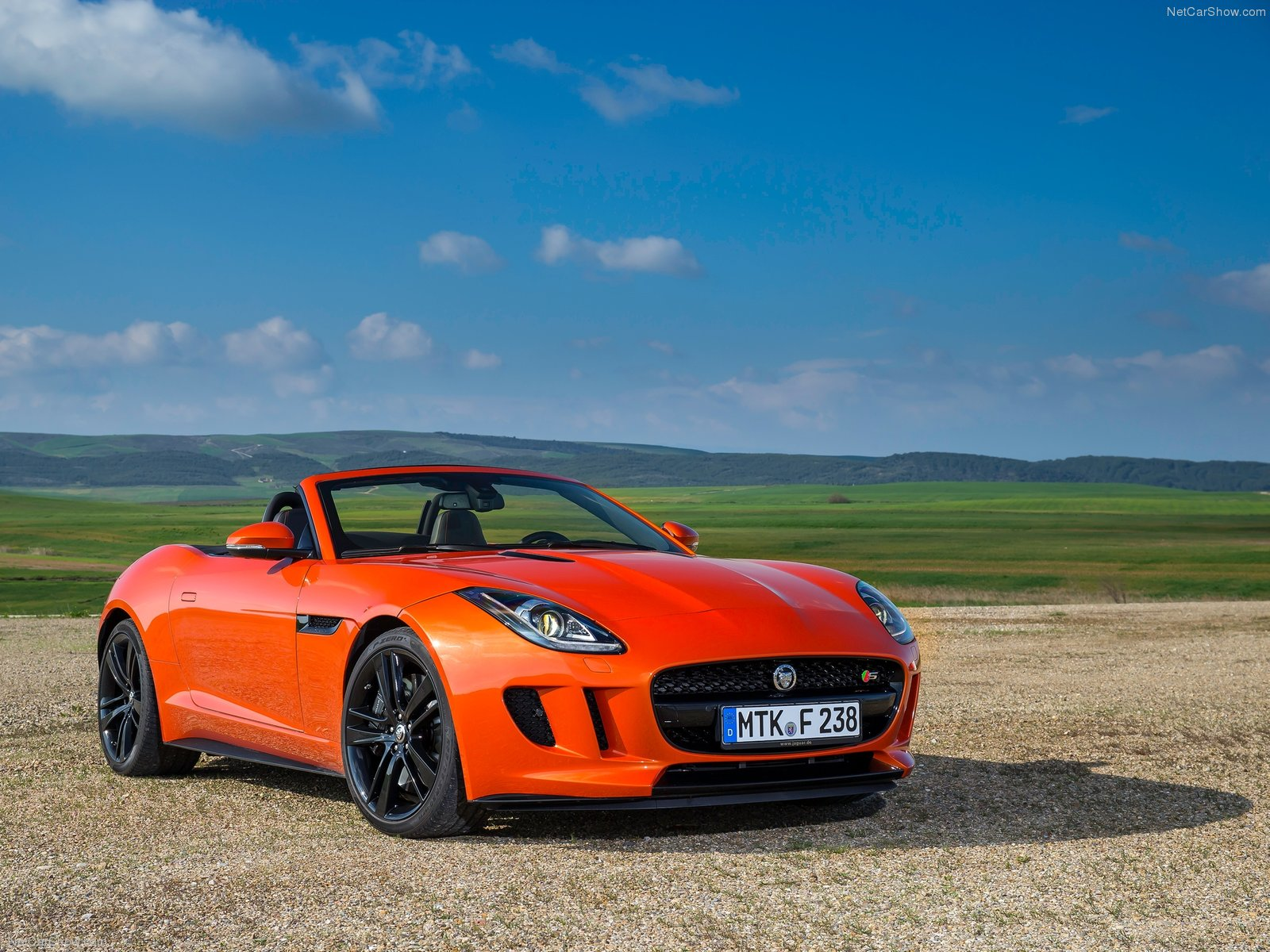 Jaguar F-Type V8 S photo 110368