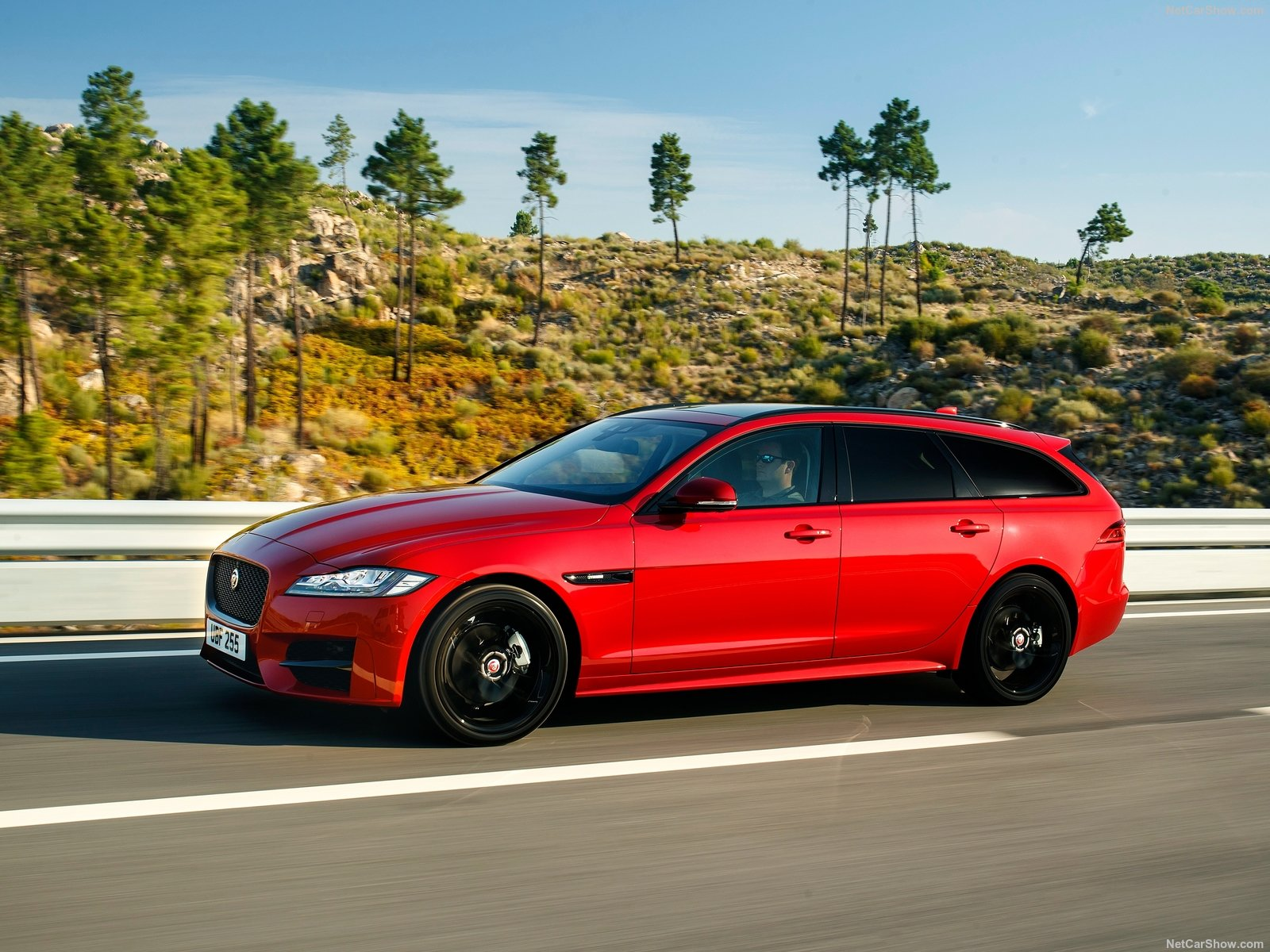 Jaguar XF Sportbrake photo 183005