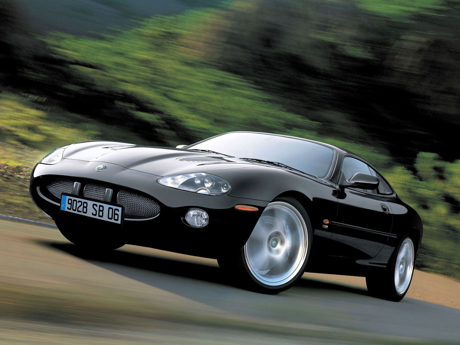 Jaguar XK photo 8799