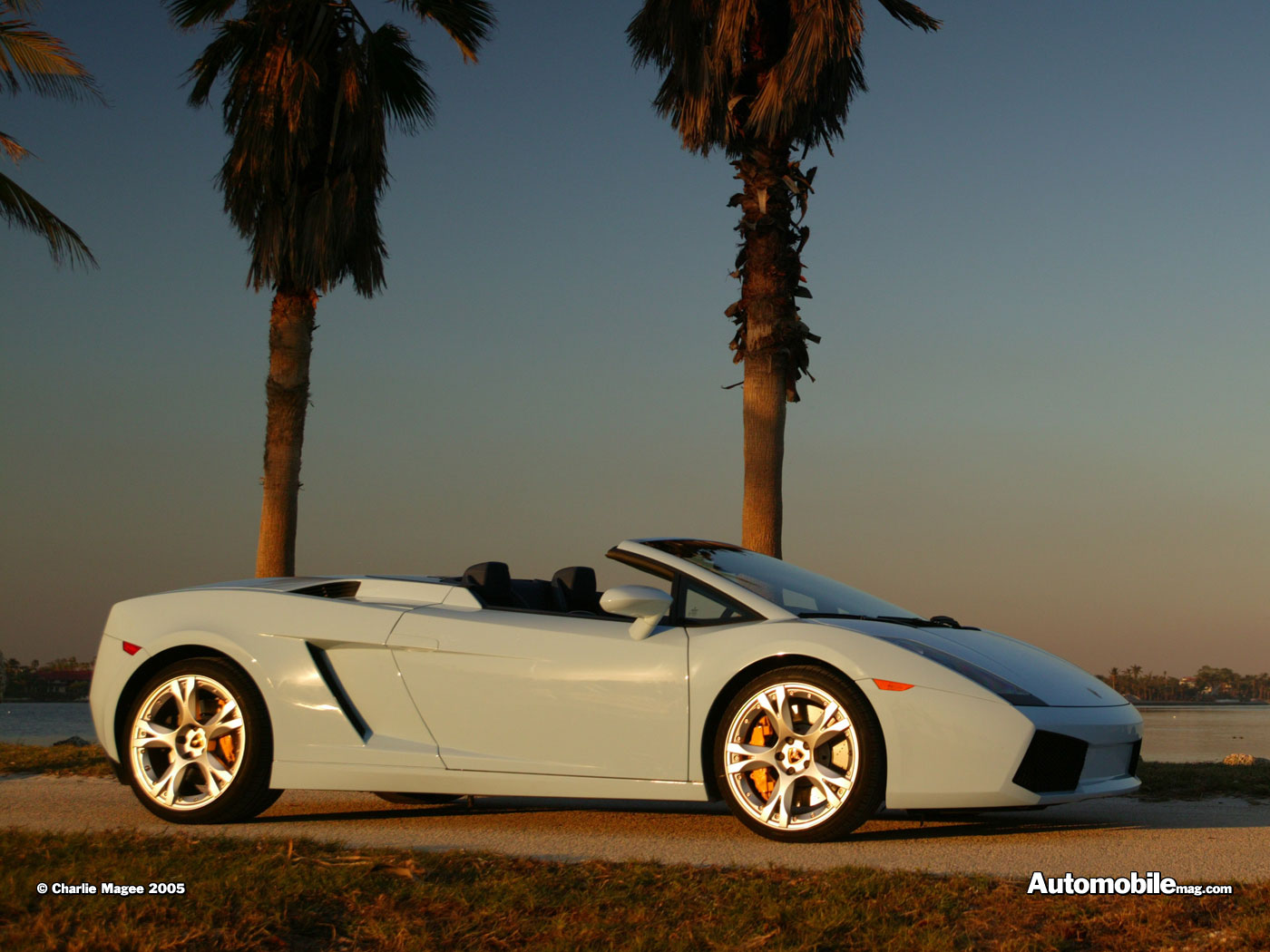 Lamborghini Gallardo Spyder photo 32502