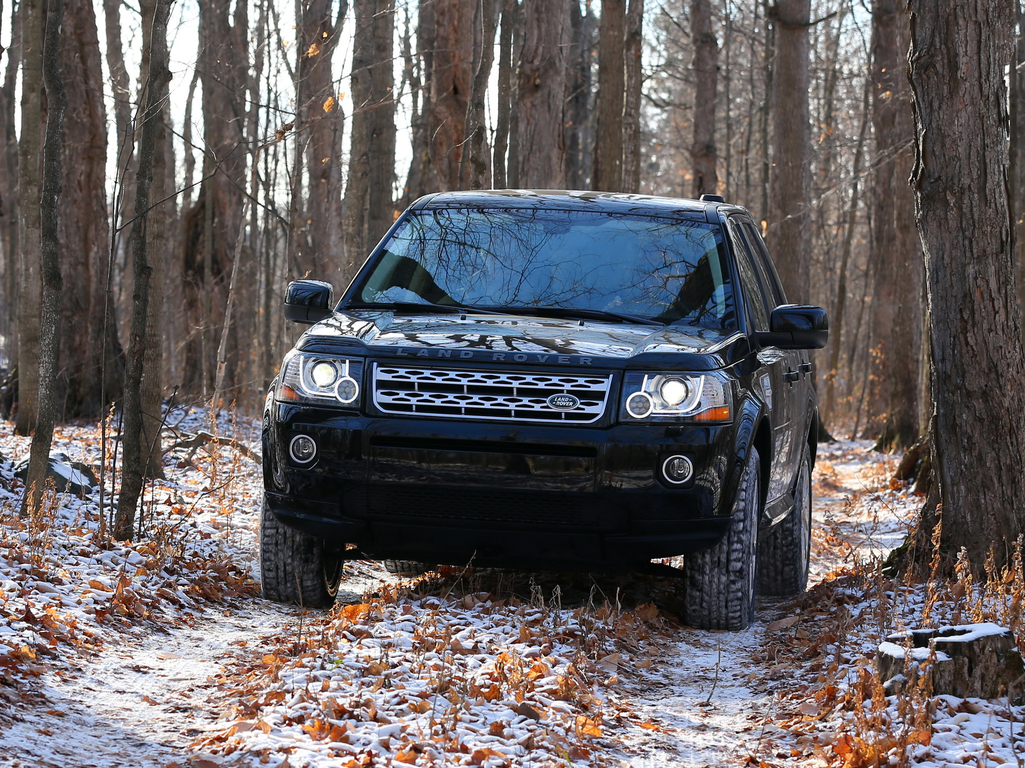 Land Rover Freelander II photo 99732
