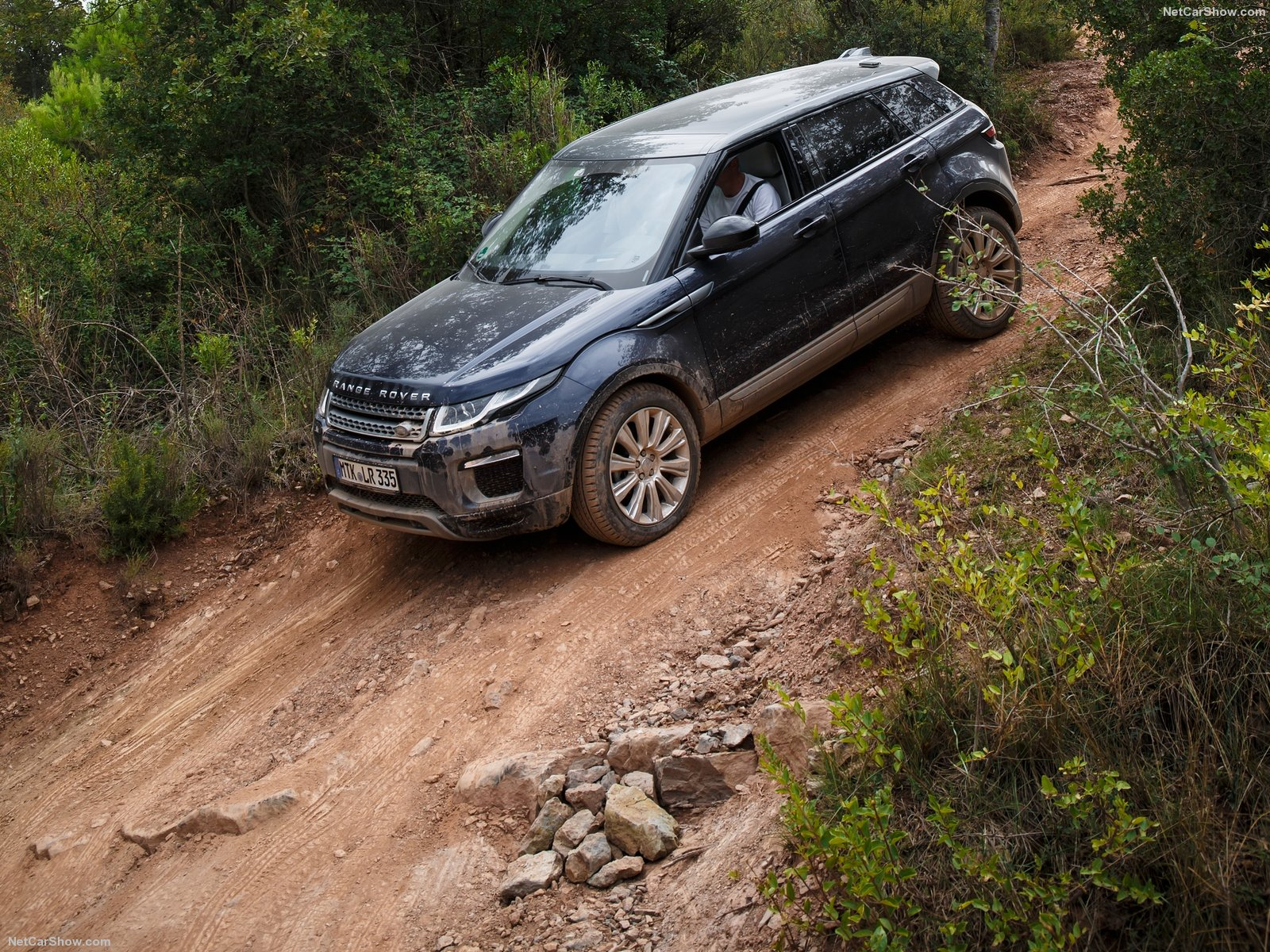 Land Rover Range Rover Evoque photo 151113