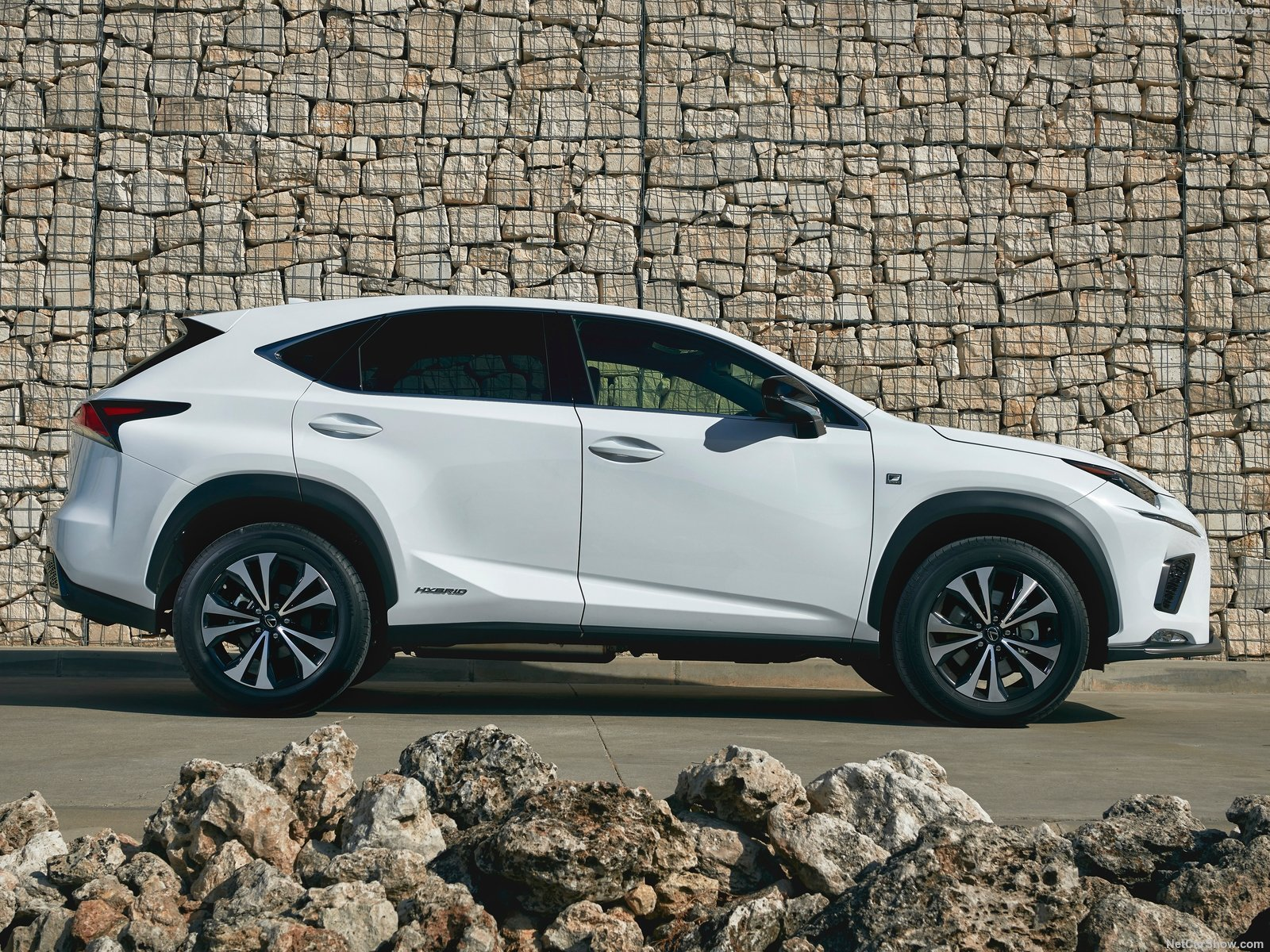 Lexus NX photo 183297