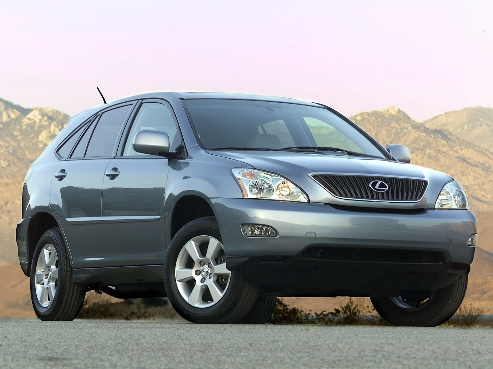Lexus RX 330 photo 3004