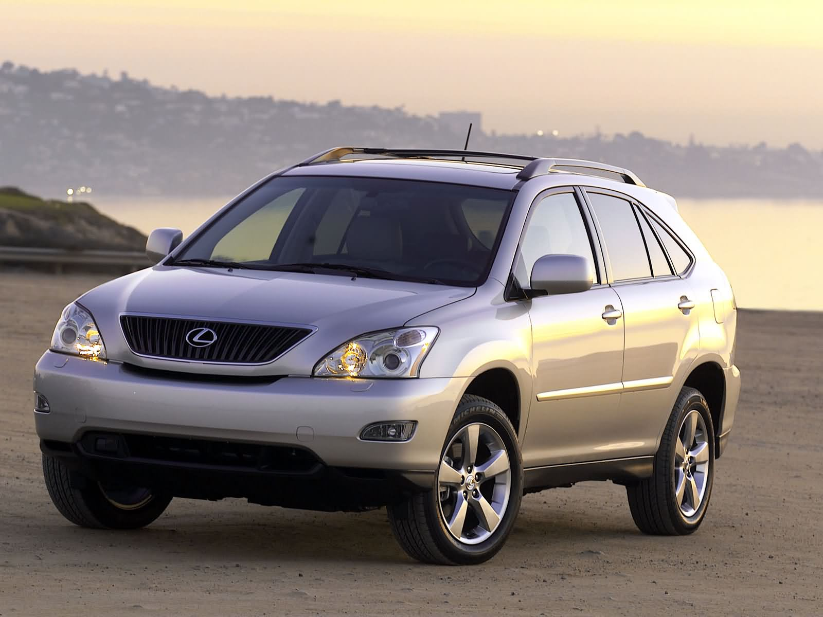 Lexus RX 330 photo 3006