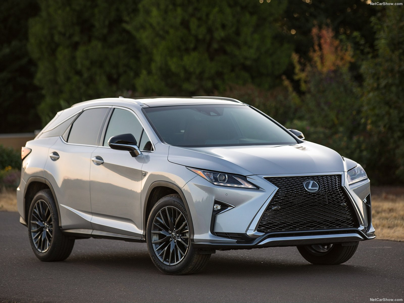 Lexus RX 350 F Sport photo 149921
