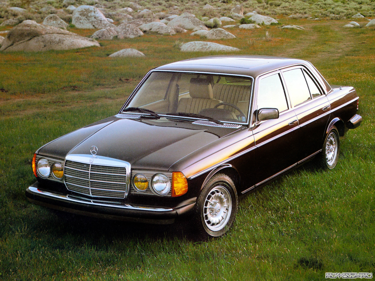 Mercedes Benz E Class W123 Photos Photogallery With 38 Pics Carsbase Com