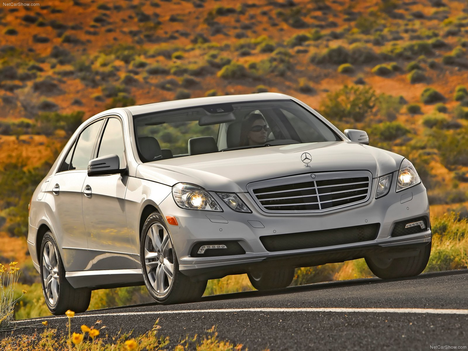 Mercedes-Benz E-Class W212 photo 79654