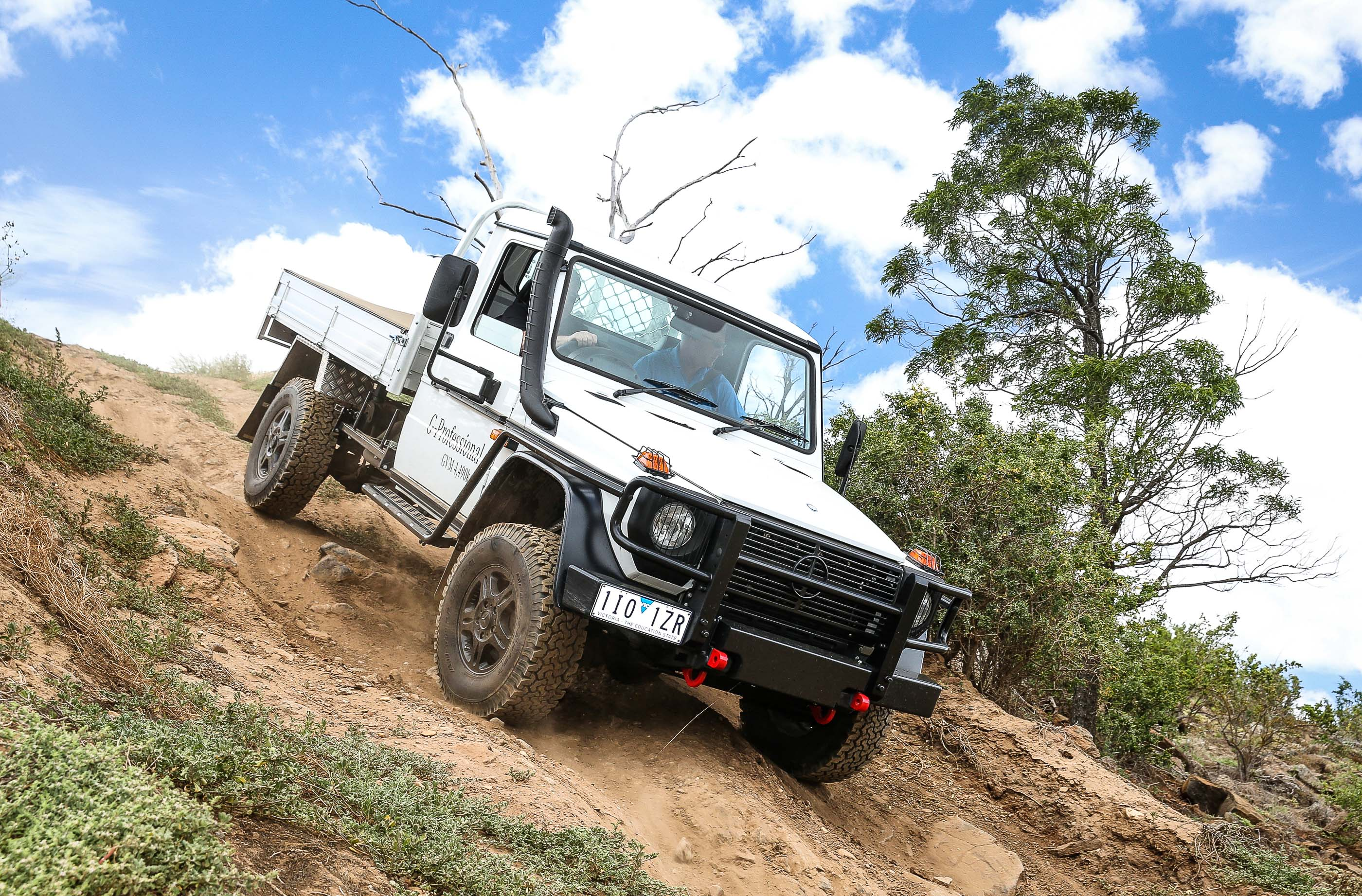 Mercedes-Benz G-Professional photo 172153