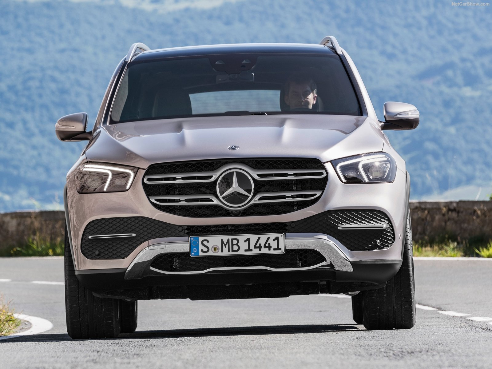 Mercedes-Benz GLE photo 190783