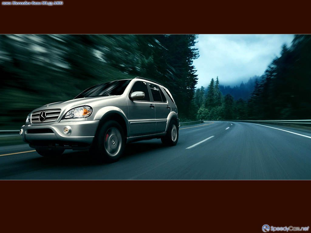 Mercedes-Benz ML AMG photo 17251