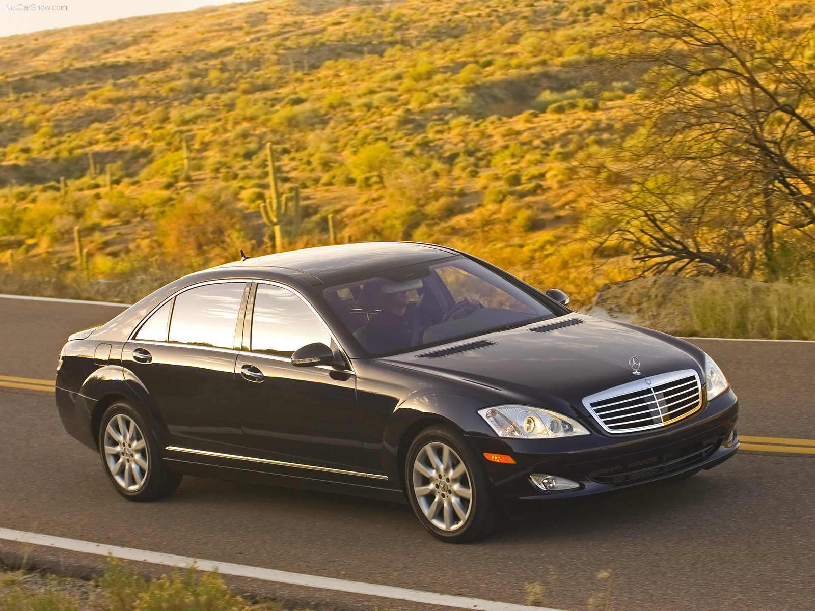 Mercedes-Benz S-Class W221 photo 37323