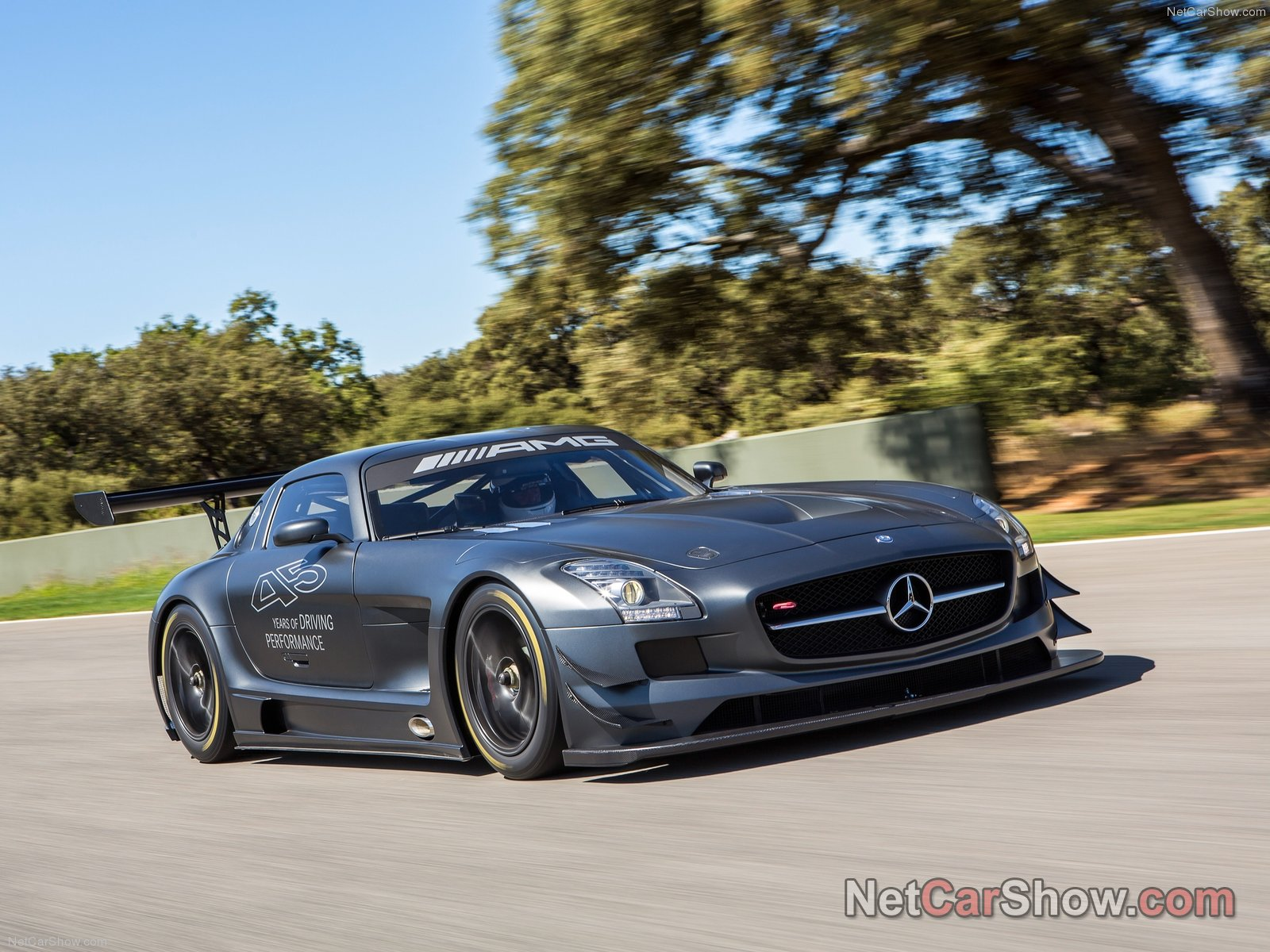 Mercedes-Benz SLS AMG GT3 photo 96303