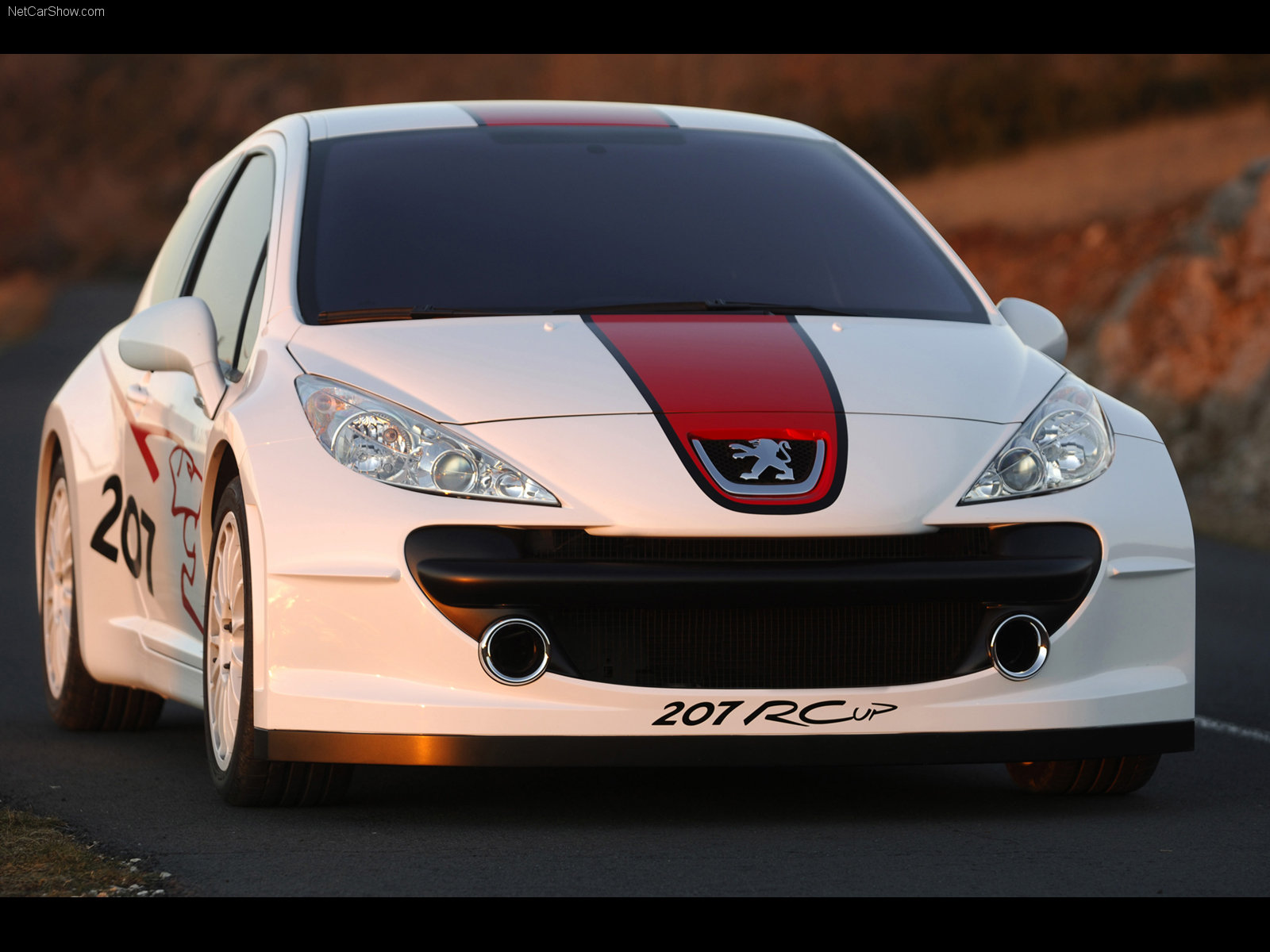 Peugeot 207 RCup photo 31999
