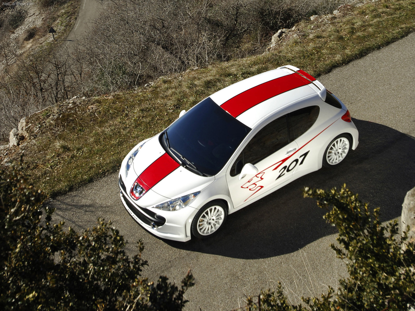 Peugeot 207 RCup photo 32000