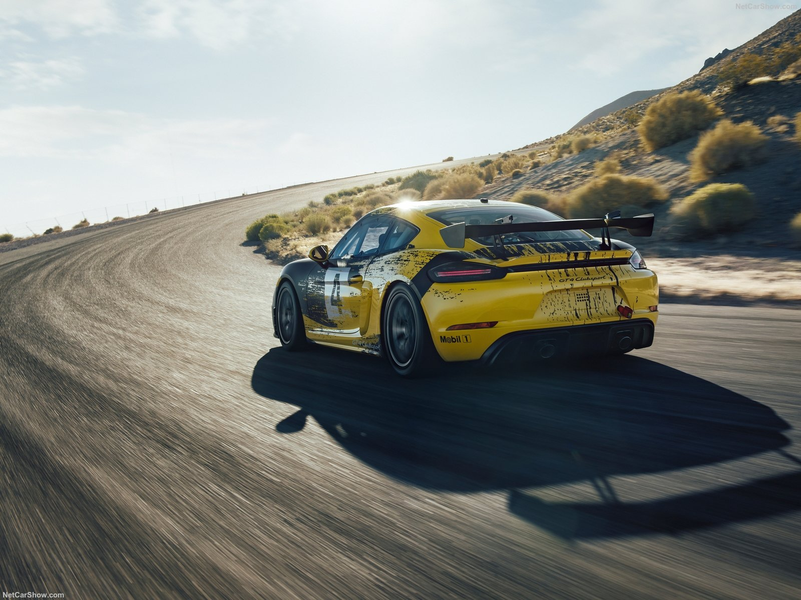 Porsche Cayman GT4 photo 192770