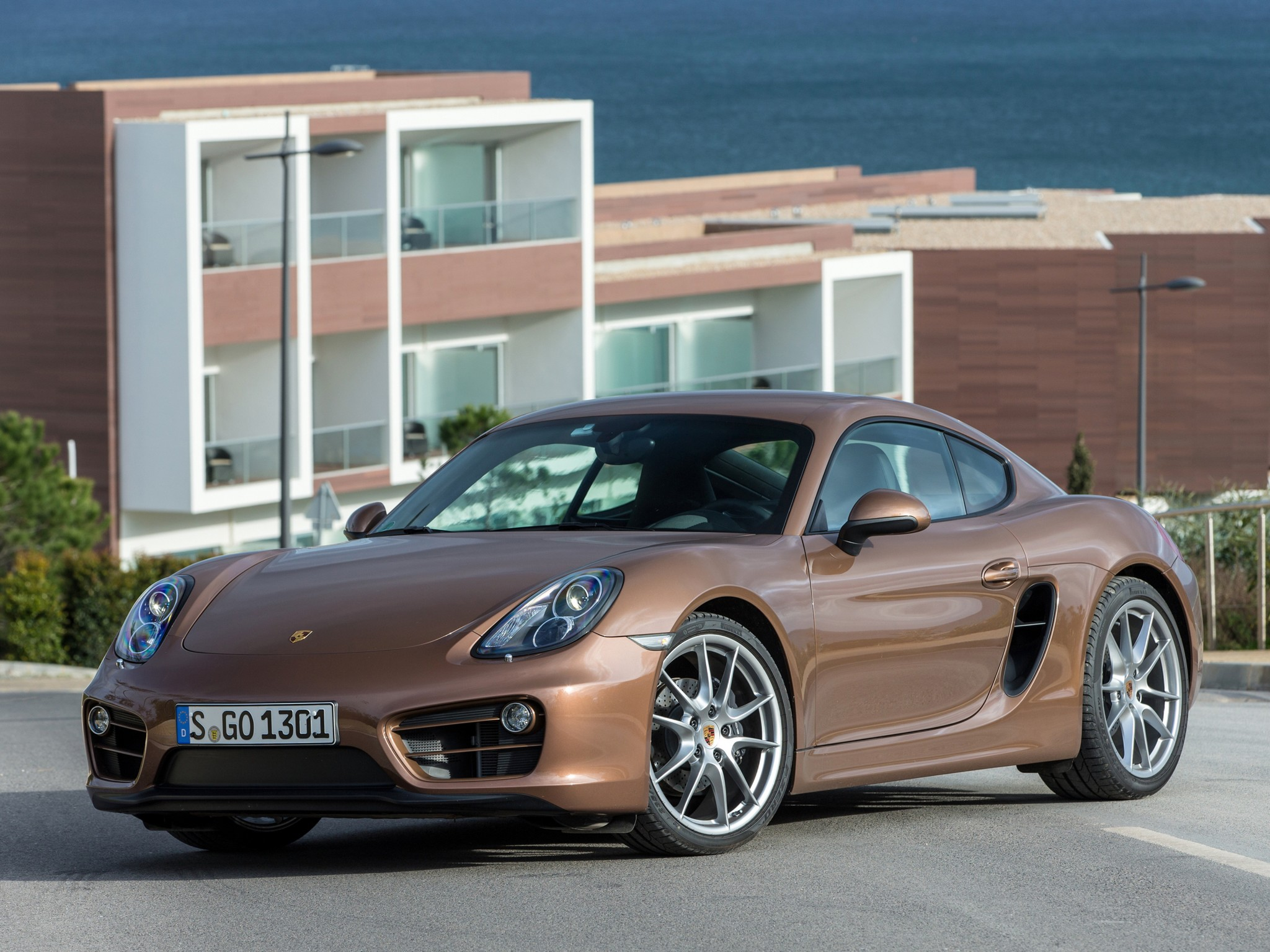Porsche Cayman photo 99556