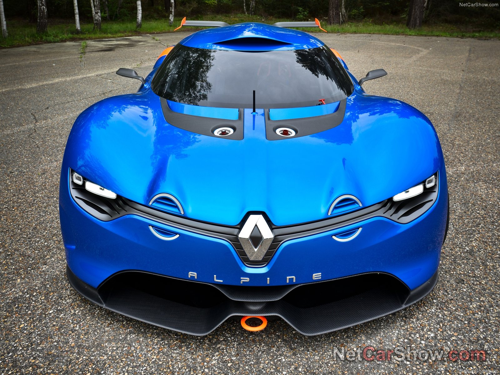 Renault Alpine A110-50 photo 92387