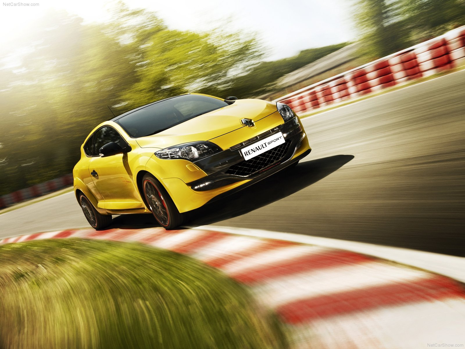 Renault Megane 265 Trophy photo 81331