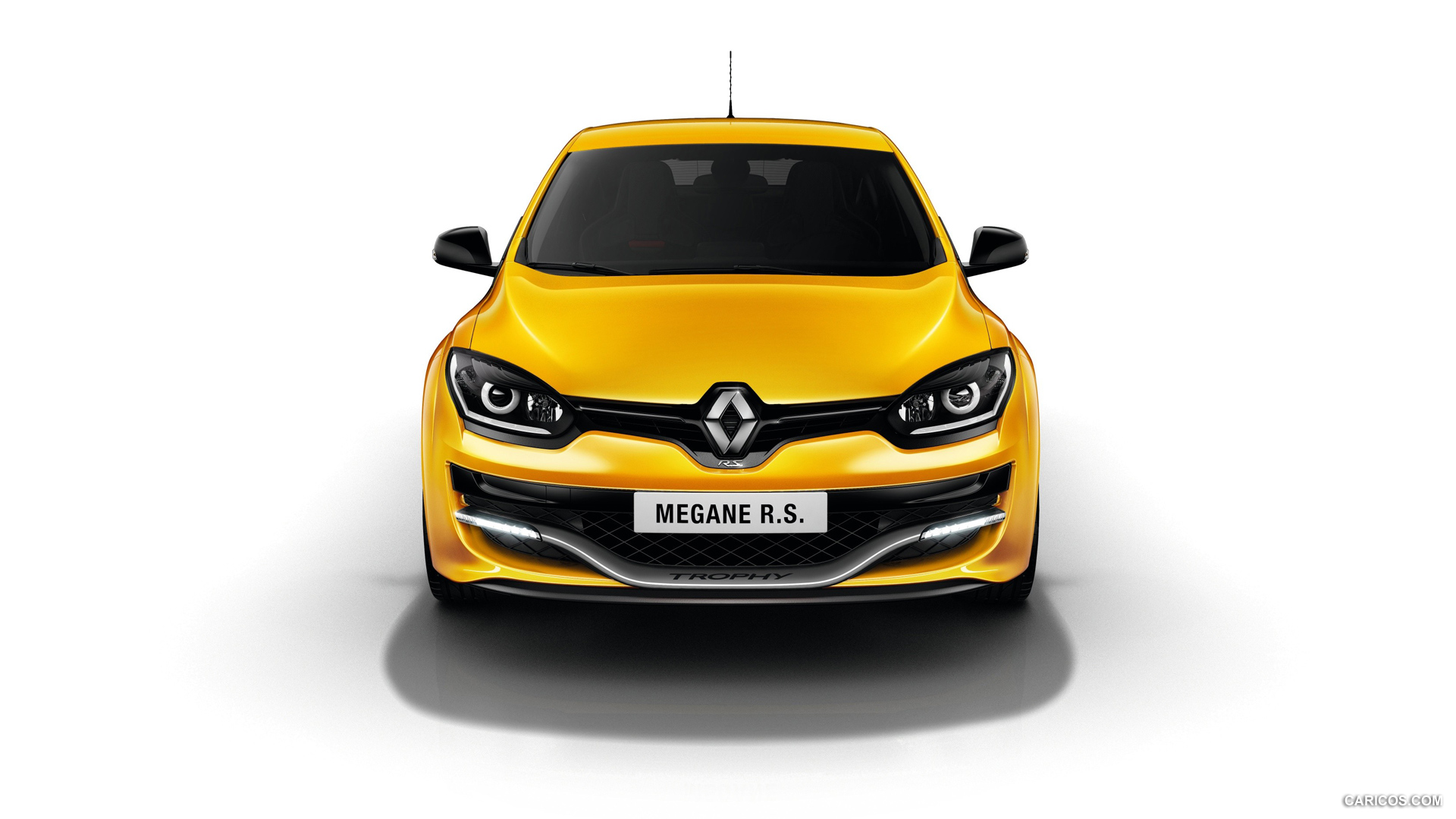 Renault Megane R.S. 275 Trophy photo 119277