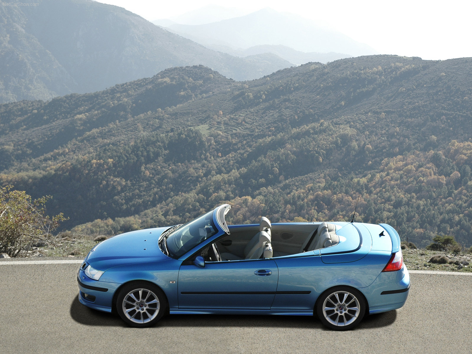 Saab 9-3 Convertible 20 Years Edition photo 31398