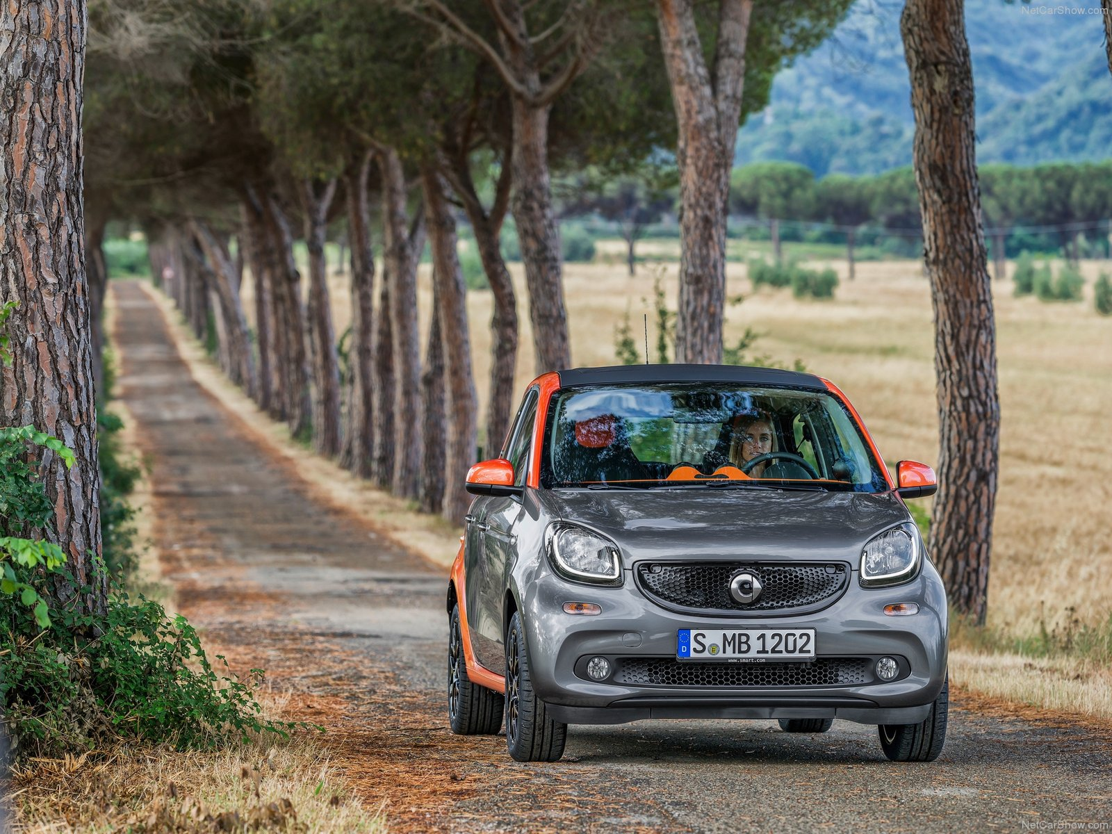 Smart Forfour photo 125111