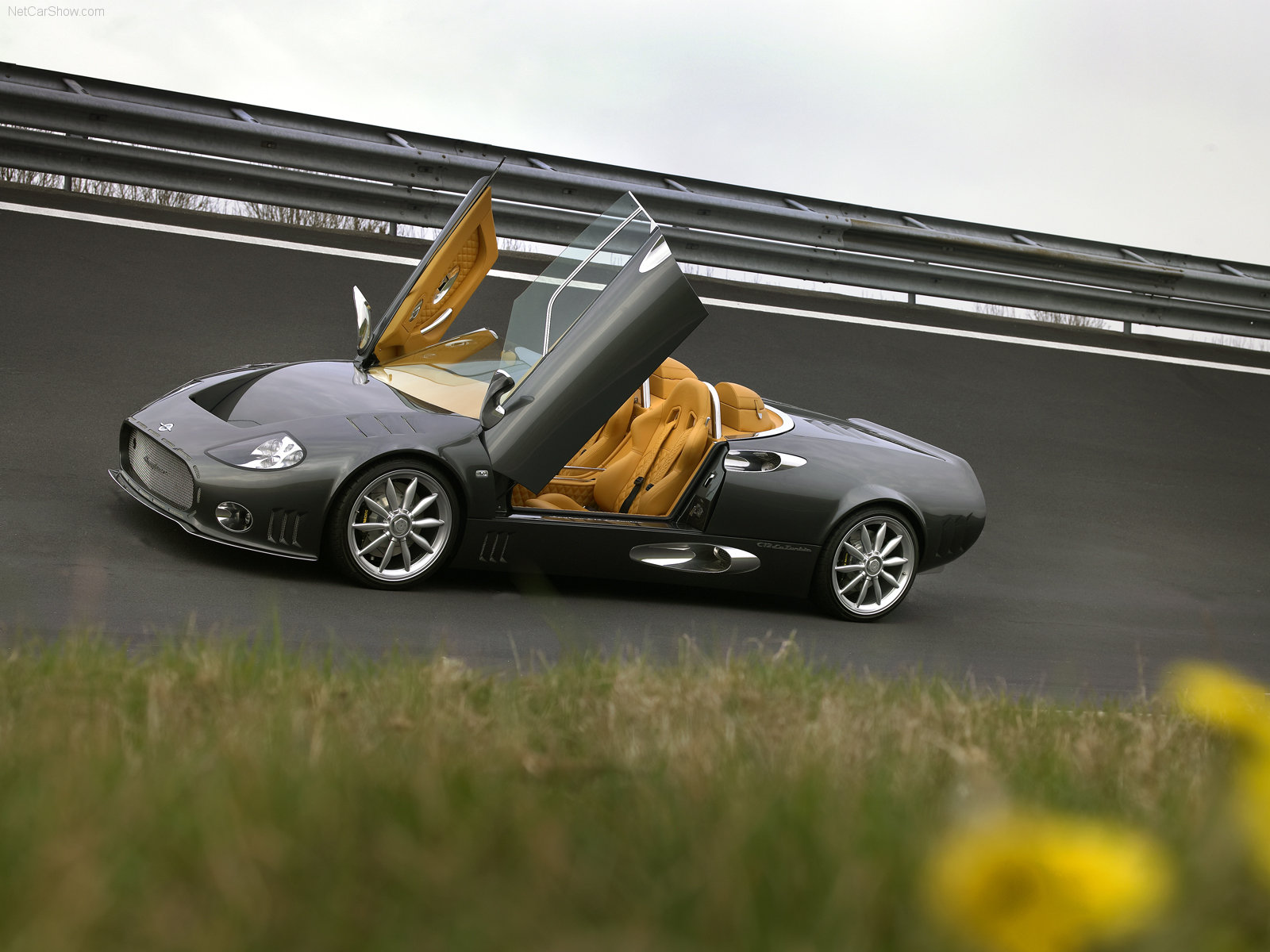 Spyker C12 Laturbie photo 38336