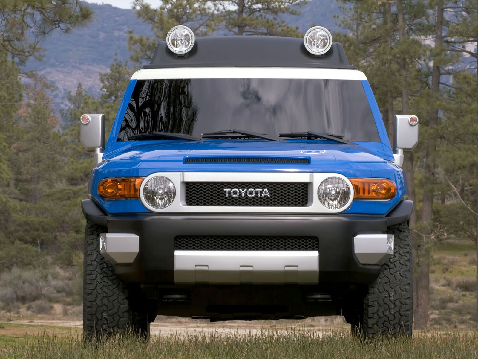 Toyota FJ Cruiser photo 21016