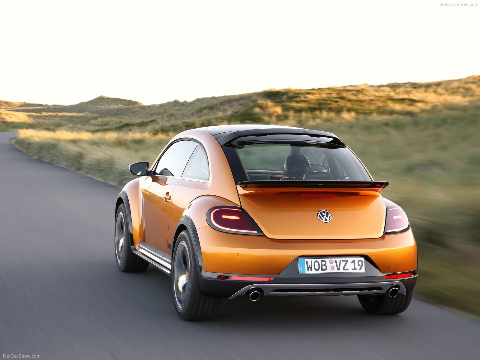 Volkswagen Beetle Dune  photo 125921