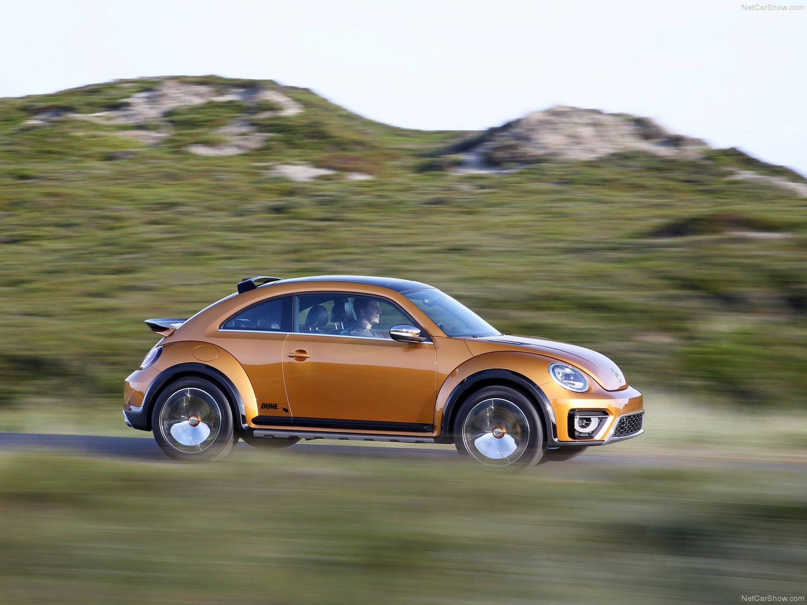 Volkswagen Beetle Dune  photo 125932