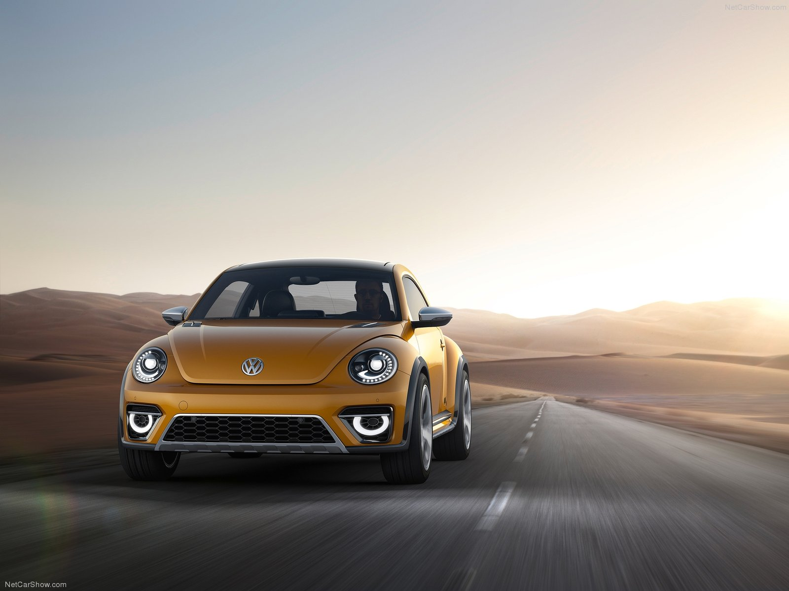 Volkswagen Beetle Dune  photo 125937